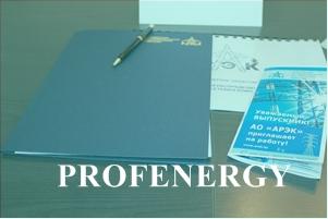Profenergy